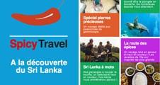 Image du projet : Spicy Travel